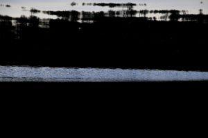 edlesberger teich 4 | 2020