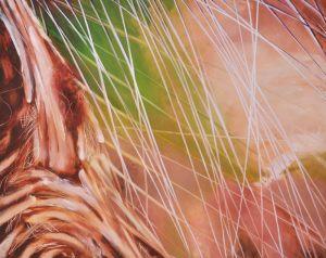 ende der trockenzeit | 100 x 80cm | 2012 (verkauft)